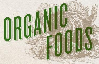 conventional vs organic farming essay